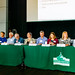 Panorama of the WSF Panel