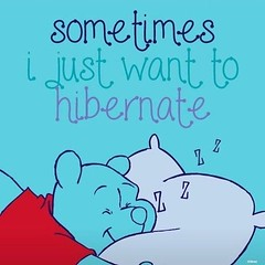 Sometimes I just want to hibernate (quotesoftheday) Tags: sometimes i just want hibernate delivered by feed43