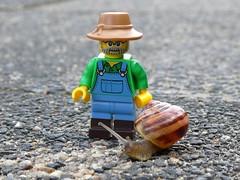 Just Friends (captain_joe) Tags: toy spielzeug 365toyproject lego series15 minifigure minifig farmer schnecke snail