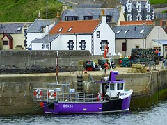 Findochty (calzer) Tags: moray findochty finechty morning scotland boat harbour houses village 14 bck chrisandra saturday