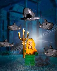 Aquaman (FinnsBricks) Tags: lego legophotography aquaman toyphotography toys justiceleague