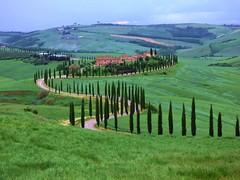 San Giovanni d'Asso (ursula.valtiner) Tags: sangiovannidasso sienna landschaft landscape toskana toscana tuscany zypressen cypresses allee avenue italien italy