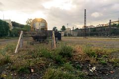 L E F T (Dsalla10) Tags: yellow maquinaria abandoned abandonado antigüo olvidado vias carcassonne francia france station estacion tren train