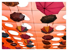 Roof of umbrella (mkumar.photographer001) Tags:
