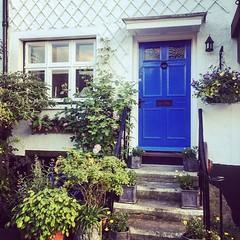 A Petworth doortrait with new coat of paint (Puckpics) Tags: instagram ifttt doortrait petworth westsussex sussex steps door frontdoor garden frontage