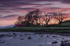 Low tide Sunset .. (Gordie Broon.) Tags: beaulyfirth lowtide shed coulmore redcastle sunset atardecer scotland schottland silhouettes trees ecosse lecoucherdusoleil charlestown northkessock rossshire escocia paysage caledonia scenic sonnenuntergang paisaje scenery scottishhighlands hills paysagemarin gordiebroonphotography inverness beauly craigrory milton alba landscape seascape olympusomdem5 olympuszuiko1240mmlens may 2019 scozia szkocja geotagged arpafeelie