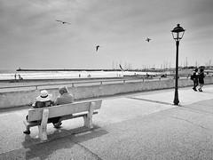 (Effe.Effe) Tags: bn bw sea mare beach spiaggia saintesmariesdelamer camargue panchina lampione blackandwhite biancoenero bench streetlamp gabbiani seagulls
