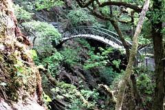 Bridge spanning lower part of Devil's Bridge Gorge, Mid Wales (HighPeak92) Tags: bridges gorges devilsbridgegorge devilsbridge midwales canonpowershotsx700hs