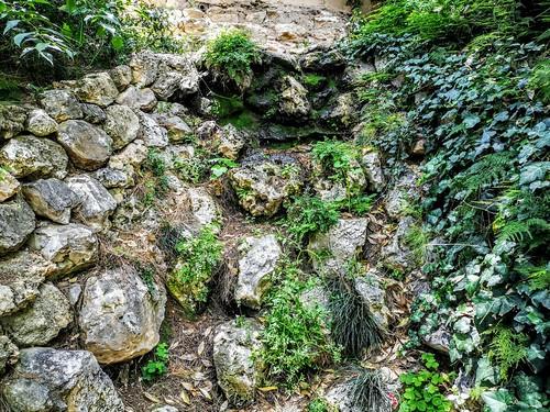 Jardín de Monforte - Valencia
