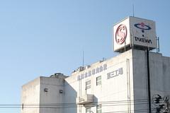 TAKEWA the seafood factory (しまむー) Tags: fujifilm xe2 ebc fujinon 55mm f18 velvia yokohama kabushima 横浜 蕪島 八戸 蕪島神社 菜の花