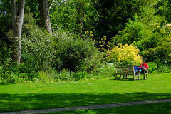 Darwin College, May 2019 (Sir Cam @camdiary) Tags: cambridge camdiary cambridgeuniversity darwincollege garden reading student bench