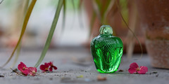 Green glass in a glass greenhouse (hehaden) Tags: glass ornament green greenhouse slate flower pink fallen bordehill sussex sel55f18z
