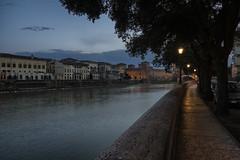 Ponte del Castelvecchio (roby22-1-1950) Tags: