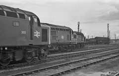 70s Donny Threesome (JohnGreyTurner) Tags: br rail uk railway train transport diesel engine locomotive doncaster yorkshire mpd shed bw negative 37 class37 tractor siphon syphon ee3 type3 40 class40 ee4 type4 whistler