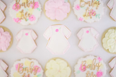 Baby Life Shower Cookies (shellynunnally) Tags: babyshower plaque floral flowers onesie