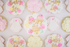 Baby Life Shower Cookies (shellynunnally) Tags: babyshower plaque floral flowers onesie watercolor