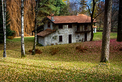 Belaggio Cottage (OxcarMR) Tags: italia italy belaggio comolake lagodicomo cottage lago lake bosque forest casa autumn otono