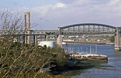 BR Blue 50037 crosses the Royal Albert Bridge at Saltash with the 13.40 London Paddington-Penzance on 31 March1986. (mikul44171) Tags: gorse saltash cornwall march1986 brunel ikbrunel tamar royalalbertbridge yachts