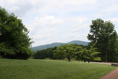 IMG_1144 (msjennywu) Tags: may272019 monticello