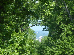 UVA from Monticello P1030663 (msjennywu) Tags: may272019 monticello