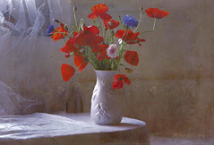 Wildflowers Spring Mood ... (MargoLuc) Tags: poppies cornflowers wildflowers red blue pink white vase pottery natural light window backlight stilllife shadows springtime moody charming flowers