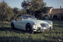 MGA (SKF-Media) Tags: classiccars classic cars automotiveportrait skfmedia