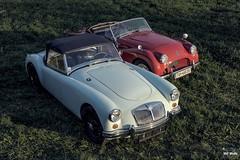 MGA & TR2 (SKF-Media) Tags: classiccars classic cars automotiveportrait skfmedia