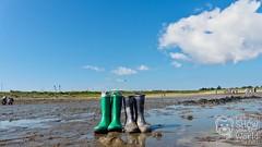 Strandgut (_Pixelbär_) Tags: urlaub vacation dänemark denmark strand beach ostsee balticsea northsea nordsee wattenmeer mudflat