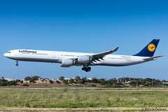 Lufthansa Airbus A340-642X  |  D-AIHP  |  LMML (Melvin Debono) Tags: lufthansa airbus a340642x | daihp lmml cn 771 ferried teruel malta for maintenance technik ltm stored from 10th october 2017 till 28th may 2019 tev melvin debono spotting spotters spotter canon eos 5d mark iv 100400mm plane planes photography airport airplane aviation