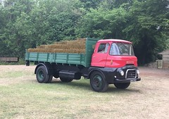 1961 Austin FFK 702 farm lorry - 2947 PW (Shaun Ballisat (Transport Photos)) Tags: classic vintage old lorries lorry truck trucks vehicles vehicle transport austin ffk 702 farm dropside tipper hay straw farming authentic working strumpshaw norfolk dereham 2947pw 2947 pw mann eggerton eggertons dixon grange photos photography rally rural east anglia