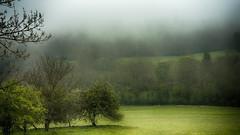 Le joli mois de Mai ! (Fred&rique) Tags: sonya7ii hdr photoshop mai printemps brume pluie nature paysage jura