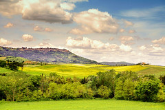 Montalcino Tuscany (Enzo Ghignoni) Tags: paese campi prati cielo nuvole alberi case toscana tuscaniy visitarelatoscana labellatoscana