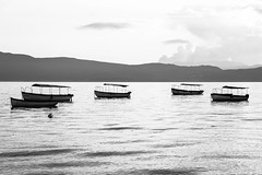 Float on (tagois) Tags: ohrid охрид lakeohrid охридскоезеро northmacedonia