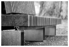 Modern Bench (Paulemans) Tags: meyergörlitztelemegor155f15cm paulemans paulderoode exakta 2019dayprimechallenge blackandwhite bw zwartwit zw