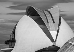 The Opera House (Palau de les Arts Reina Sofia)  The Arts & Science Area - Valencia (Monochrome) (Olympus OM-D EM1.2 & M.Zuiko 12-100mm f4 Pro Zoom) (1 of 1) (markdbaynham) Tags: valencia vlc valencian spanish es espana olympusmft olympusem1 omd olympusspain spainm43 architecture artsandscience buildings modernbuilding modernstructure city cityscape citybreak olympus mft mirrorless micro43 microfourthird microfourthirds mirrorlesscamera 12100mm 12100mmf4 zoomlens prolens olympusprolens olympuspro m43 micro43rd m43rd view urban metropolis em1 em1ii em1mk2 em1mark2 em12 omdem1 omdm43 espanol olympusespana mzd mz zd mzuiko zuikolic 12100 em1mkii