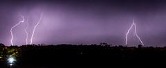 Severe Thunderstorm (Markus Branse) Tags: thunderstorm seenfromfanniebayforeshore darwin northernterritory australia tags hinzufügen nightstorm gewitter nooamah northern territory notthern austalien austral australie aussie oz thunder storm lightning blitze bolt unwetter wetter weer meteo weather wolken cloud clouds wolke outback hell nacht langzeitbelichtung nite night nuit himmel tier gras verschwommen sonnenuntergang
