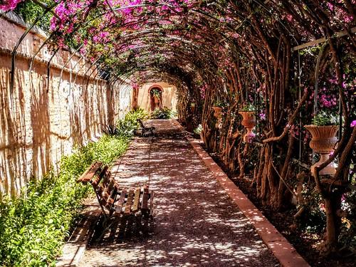 Paseo de los Enamorados - Jardín de Monforte - Valencia