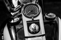 Harley Davidson (TrevKerr) Tags: harleydavidson motorbike motorcycle moto nikon