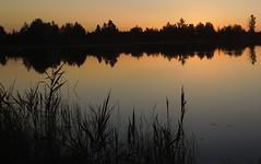 Летний вечер (elgorka637) Tags: лето summer lake sunset озеро