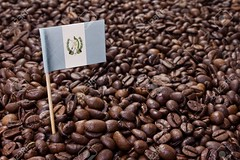 Flag of Guatemala sticking in coffee beans.(series) (B3 Photos) Tags: coffee flag food background beans bean design pattern closeup frame drink caffeine espresso patriotism seeds abstract symbol texture concept fresh brown element backdrop studio shiny detail delicious gourmet country breakfast roasted guatemala guatemalan south america american national colors blue white
