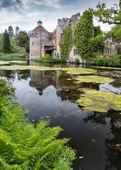 Scotney Castle (ivanstevensphotography) Tags: manorhouse nationaltrust moat water castle reeds trees ferns foliage flowers plants