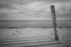 (heinrichj) Tags: trip travel europe denmark dänemark country countryside bw black white monochrome ricoh ricohgr ricohgr3 ricohgriii ricohimaging gr gr3 griii beach baltic sea ocean