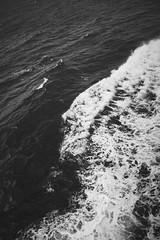 (heinrichj) Tags: trip travel europe denmark dänemark country countryside bw black white monochrome ricoh ricohgr ricohgr3 ricohgriii ricohimaging gr gr3 griii ferry roedby puttgarden fehmarn baltic sea ocean
