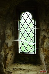IMG_3025 (psychosteve-2) Tags: castle battle hastings cobwebs window