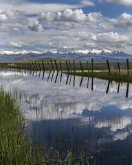 camas prairie-05-23-19-27 (Ken Folwell) Tags: clouds skies water mountains snow fence marsh reflection landscapes outdoors