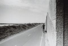 Fujica ST Dockweiler Beach Bike Path 1 (▓▓▒▒░░) Tags: fujica st slr fuji bw black white monochrome la los angeles california history bike ride architecture landmark arts analog mechanical classic retro vintage antique 35mm film camera design style