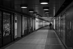 South Penn Square ©2019 Karp (kartofish) Tags: monochrome street candid trains subway concourse philadelphia pennsylvania fuji fujifilm xt2 pennsquare southpennsquare blackandwhite