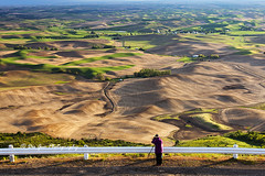 Photographing the Palouse (PhotoDG) Tags: landscape palouse whitmancounty washington unitedstates wave wheat field pattern texture hill photographer color farm farmimg steptoebutte steptoe farmland steptoebuttestatepark thesevenwondersofwashingtonstate statepark