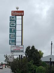 Biltmore Motel (jericl cat) Tags: neon sign biltmore motel googie roadside denver colorado 2018