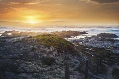 Golden Age (amymedina.photoart) Tags: blue art asilomar california light sunset sun seascape beach nature clouds landscape photography monterey rocks vibrant pastel coastal shore nautical tidal fiery